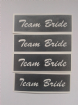 1 - 100  x Team bride word stencils for glitter tattoos / airbrush / face painting Bachelorette / Hen night party